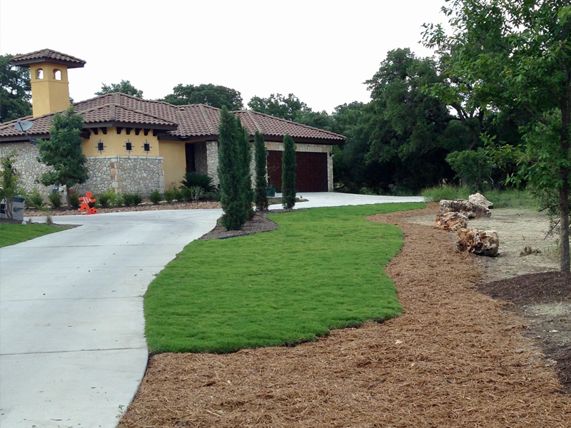New Sod and Landscape