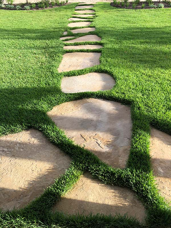 Stone Walking Path